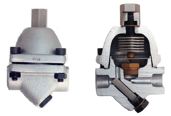 Bitherm Bimetallic Thermostatic Steam Traps